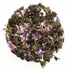 Иван-чай листовой с соцветиями