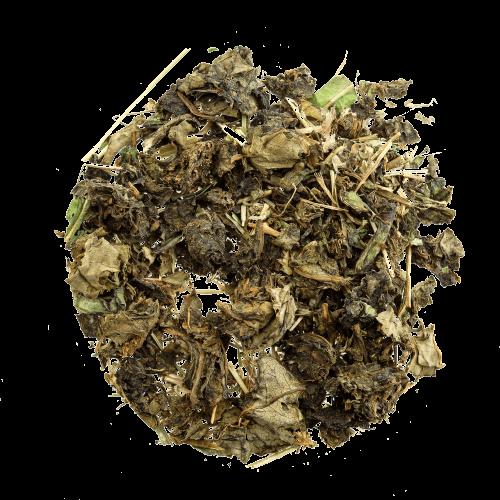 Иван-чай листовой без соцветий с мятой